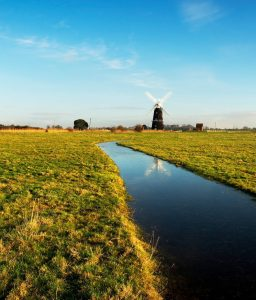 Picture of Halvergate Mill